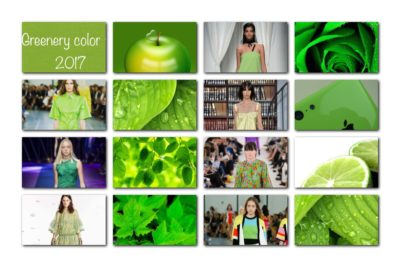 GREENERY NAMED COLOR OF THE YEAR