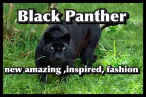 BLACK PANTHER WINS BIG WITH NEW, AMAZING, INSPIRED FASHION